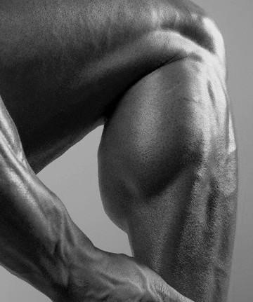 العضلات التي تلفت انتباه البنات Calves.jpg